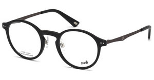Web Eyewear WE5207 002