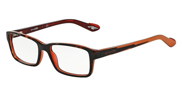 Arnette AN7034 1102 TOP HAVANA ON ORANGE