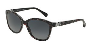 Dolce & Gabbana DG4258 2778T3 POLAR GREY GRADIENTTOP BLACK FLOWERS ON BLACK