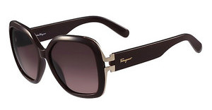 Salvatore Ferragamo SF781S 604