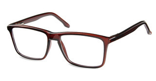 Sunoptic CP175 C Shiny Dark Brown
