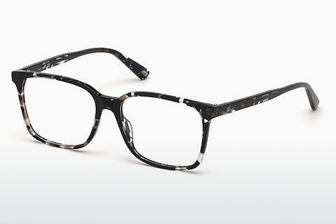 Óculos de design Web Eyewear WE5292 055