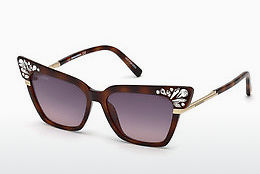 Óculos de marca Dsquared DQ0293 53B - Havanna, Yellow, Blond, Brown