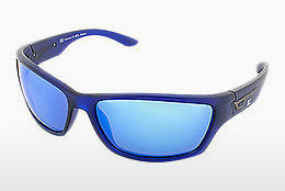 Óculos de marca HIS Eyewear HP67106 2