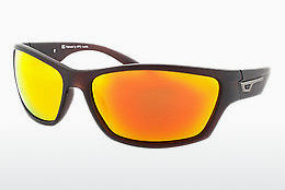 Óculos de marca HIS Eyewear HP67106 3