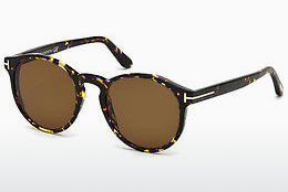 Óculos de marca Tom Ford FT0591 52M - Castanho, Dark, Havana