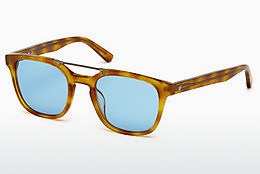Óculos de marca Web Eyewear WE0166 A53 - Havanna, Yellow, Blond, Brown
