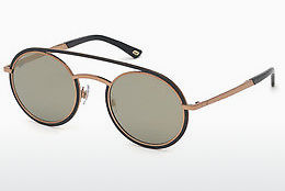 Óculos de marca Web Eyewear WE0241 34C - Bronze, Bright, Shiny