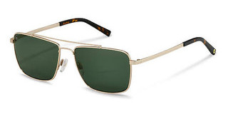 Rocco by Rodenstock RR104 B light gold, havana